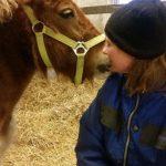 Healing af dyr og ejer